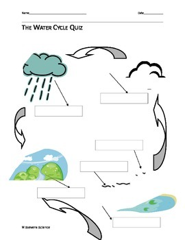 The Water Cycle Quiz by M Stevens Science | Teachers Pay Teachers