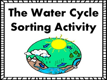 The Water Cycle Sorting Activity