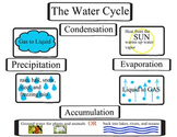 The Water Cycle, The Hydrologic Cycle, Activity for scienc