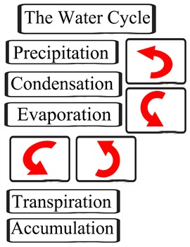 The Water Cycle, Water Cycle key words, The Hydrologic Cycle, with arrows