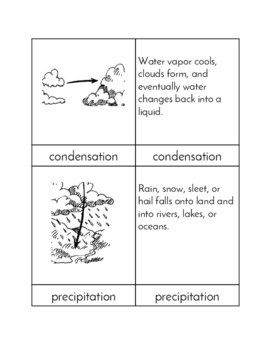 The Water Cycle - Three/Four Part Cards