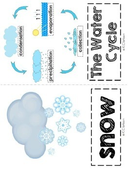 The Water Cycle Vocabulary Cards