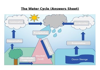 The Water Cycle Worksheet and Answers