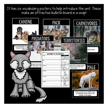 All About Wolves Activity Pack