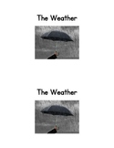 The Weather:  an Emergent Reader and matching activity