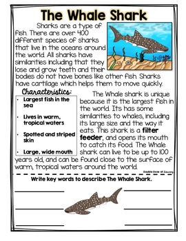 The Whale Shark Research Unit with PowerPoint