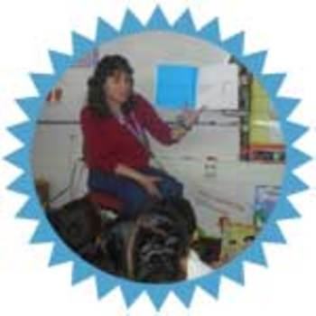 Disability Awareness The Wheelchair  ISBN 978-1-4343-6234-6