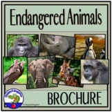 Endangered Animal Brochure Project with Rubric - The White Giraffe