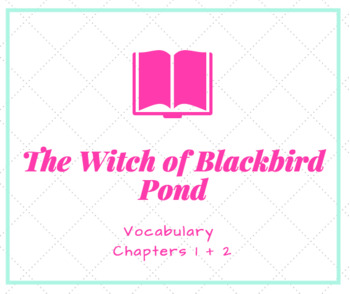 The Witch of Blackbird Pond Ch.1&2 Vocabulary PowerPoint