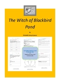 The Witch of Blackbird Pond Complete Literature and Grammar Unit