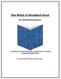 The Witch of Blackbird Pond Literature, Grammar, & Interactive Foldables Unit