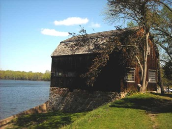 The Witch of Blackbird Pond and Puritan America