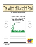 The Witch of Blackbird Pond guided reading novel study