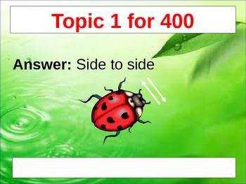 The Wonderful Life of a Ladybug Jeopardy