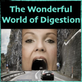 The Wonderful World of Digestion