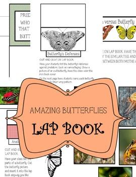 The World Of Butterflies Lap Book