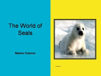 The World of Seals