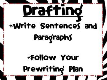 The Writing Process-Zebra