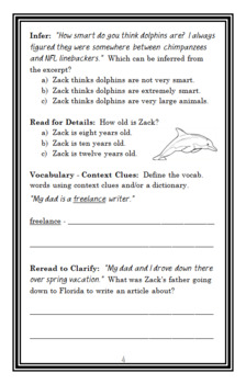 The Zack Files: How to Speak Dolphin in Three Easy Lessons Novel Study  (26 pgs)