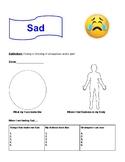 The Zones Feelings Workbook