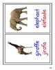 The Zoo - Bilingual Flashcard - English / Spanish