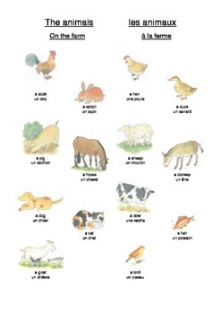 The animals (on the farm) - French lessons