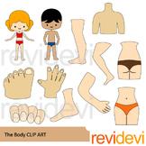The body clip art - Body parts clipart