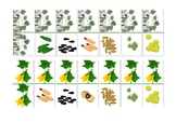 "The domino game ""Seeds of trees"""