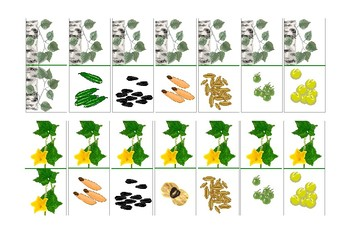 """The domino game """"Seeds of trees"""""""