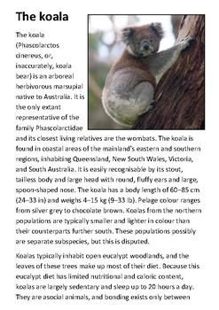 The Koala Handout