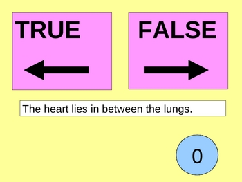 The lungs true false game