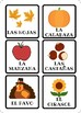 The seasons - Las estaciones Spanish, English, Bilingual