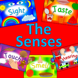 The senses topic activity pack- Ourselves, All about me