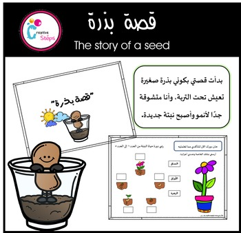 The story of a seed- Colored version