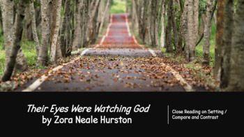 Their Eyes Were Watching God - Setting Comparison
