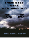 Literature - Their Eyes Were Watching God: Two Final Tests