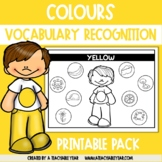 Thematic Words Colours | Language Worksheets | Great for ESL