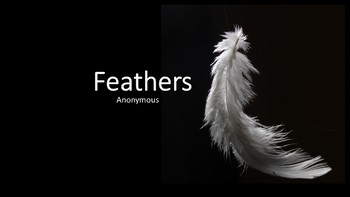 Theme: Feathers