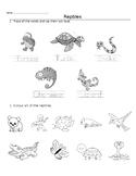 Theme Worksheet- Reptiles