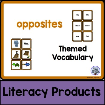 Themed Vocabulary - opposites