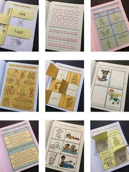 Then and Now Interactive Notebook ~ Reading Street Kindergarten