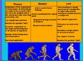 Theory Vs. Law Whiteboard Activity