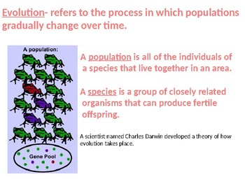 Theory of Evolution by Natural Selection