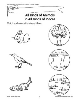There are many kinds of animals