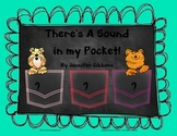 There's A Sound in my Pocket! Beginning Sounds Pack