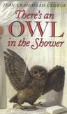 There's An Owl in the Shower - teaching ecology, responsib