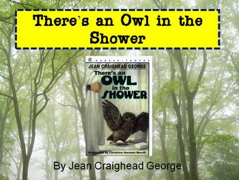 There's an Owl in the Shower Lessons and Assessment Bundled