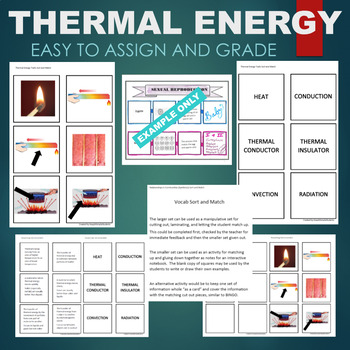 Thermal Energy Traits (Conductor, Insulator, etc) Sort & Match Activity