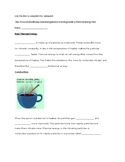 Thermal Energy Webquest