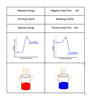 Thermochemistry Endothermic and Exothermic Card Sort Warm Up Activity